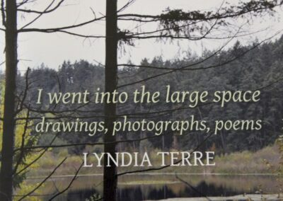Lyndia Terre Exhibit at Gage Gallery
